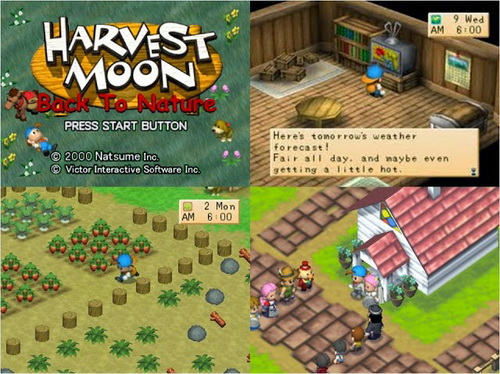 بازی کامپیوتر Harvest Moon: Back to Nature
